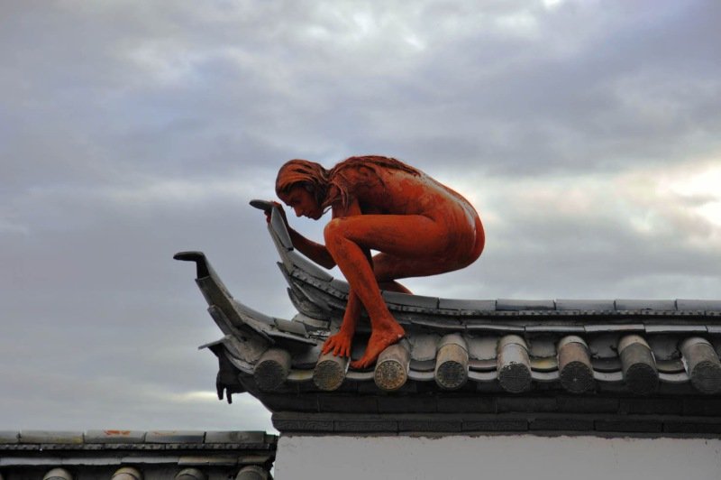 sarah-trouche-action-for-lijiang-2010