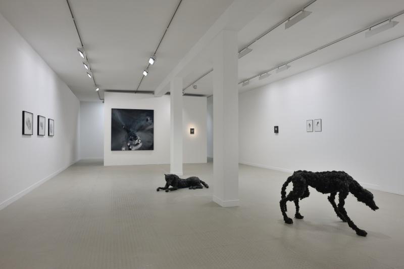 Vue 2 de l'exposition Parenth+¿ses et suspensions_Lionel Sabatt+®_Galerie municipale_copyright Rebecca Fanuele