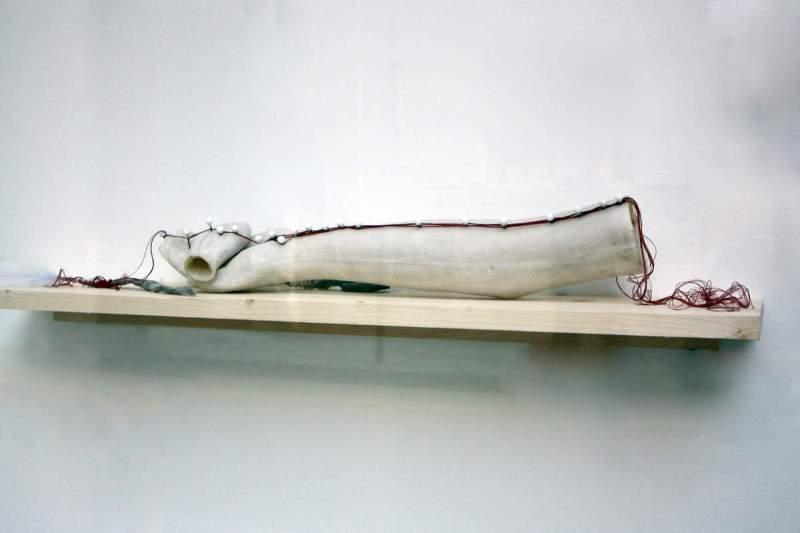 Ex votu polarisation / Myriam Mihindou / Galerie Maia Muller, Paris