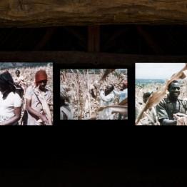 Kapwani-Kiwanga-Ujamaa-2016-Courtesy-de-l'artiste-Ferme-du-Buisson-©-film-Yves-Billon-et-Jean-François-Schiano-©-ph