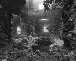 Nicolas Floc'h, Structure productive, récif artificiel - 23m, Japon, 2013, Photographie noir et blanc, hahnemühle matt fibre, 110 x 137,5 cm, Ed 3 + 1EA.