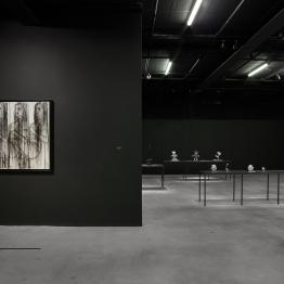Gadha AMER exposition Dark Continent 2018