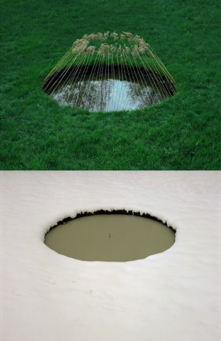5. Nid d'eau, Allemagne, 1976, roseaux, été, hiver, diptyque, ilfochrome sur aluminium, 100 x 69,7 cm, courtesy galerie-gastaud.com